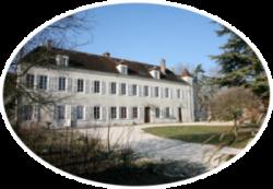 Stage en Bourgogne : la cuisine des plantes sauvages