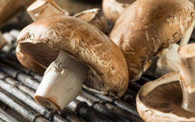 Recette : champignons farcis